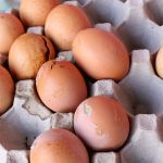 30,000 Spoiled Eggs Caught in Transit Near Jerusalem