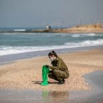 Israel bans sale of all Mediterranean seafood in wake of the oil spill